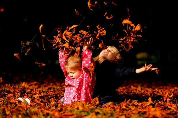 Sisters Isabelle (2) and Holly Brennan (5) from Lucan pictured in the leaves from a horse chestnut tree in the Phoenix Park. Photo: Gerry Mooney