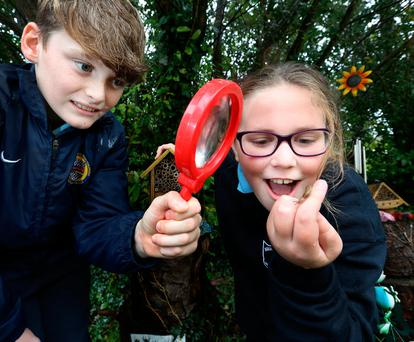 Eoghan Flynn (11) and Abigale Bates (10), both from fifth class at Birdhill NS, find a slug at their school's nature garden. Photo: Frank McGrath