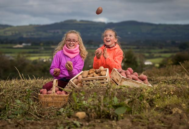 Anna Cummins (9) and Faye Gannon (9) from Slieverue National School, Waterford help launch National Potato Day.
