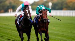 Raheen House (right), with Jamie Spencer up, gets the better of Weekender (Frankie Dettori) to win the Noel Murless Stakes at Ascot. Photo by Alan Crowhurst/Getty Images