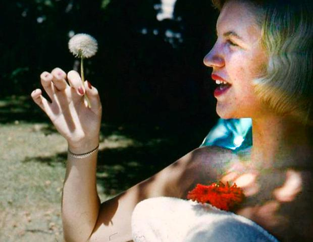 OPPRESSED BY THE FIGURES OF BEAUTY: Sylvia Plath, whose work has been presented with a wide variety of covers
