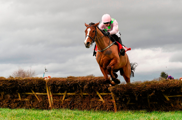 Faugheen and Ruby Walsh clear the last on the way to winning the 2016 Irish Champion Hurdle, his last run before injury. Picture credit: Brendan Moran / Sportsfile