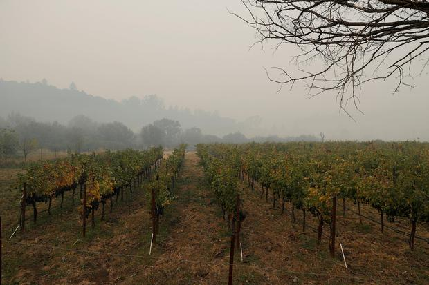 FILE PHOTO: Smoke from various wildfires are seen in Sonoma Valley along Highway 12 during the Tubbs Fire in Sonoma, California, U.S., October 10, 2017. REUTERS/Stephen Lam/File Photo