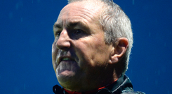 Cork City manager John Caulfield Photo: Sportsfile