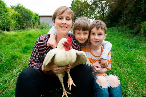 Stay-at-home parent Pauline O'Reilly with her children Finn (10) and Cara (6) and Snowdrop the hen at home in Galway. Photo: Andrew Downes