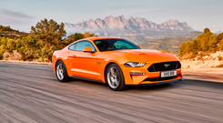 Fast and not so furious: Mustang now a friendlier beast. Photo: Stuart G W Price www.S-P.tv