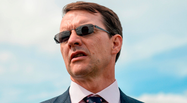 Aidan O'Brien trains Dewhurst first four