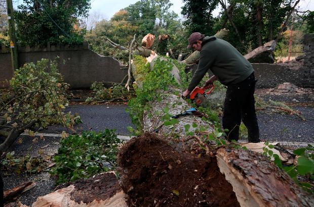 Locals cut up and clear a fallen tree which had been blocking the road for most of the day on the Leixlip Road, near the Salmon Leap Inn this evening after Hurrricane Opelia