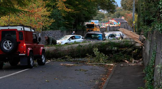 Locals cut up and clear a fallen tree which had been blocking the road for most of the day on the Leixlip Road, near the Salmon Leap Inn this evening after Hurricane Ophelia Picture Colin Keegan, Collins Dublin.