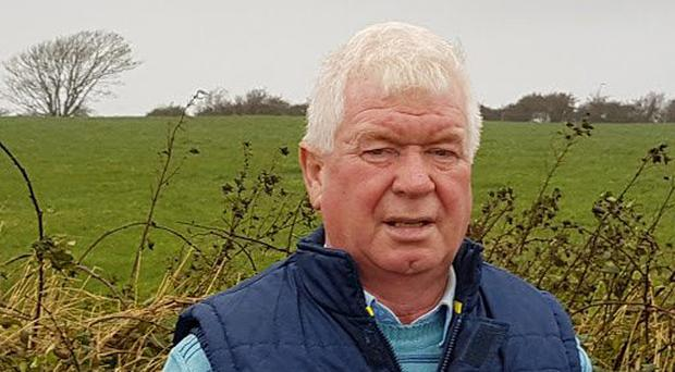 'We've seen worse days in these parts' – relief for farmer as cattle remain safe