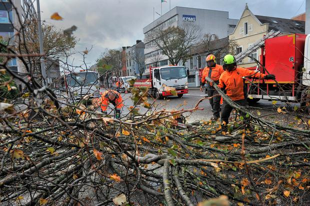 City council workers begin the clean up begins following Storm Ophelia, Cork city. Pic Daragh Mc Sweeney/Provision