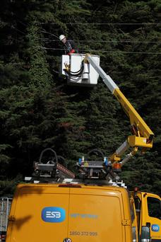 ESB crew attendelectricitycables on N11, Co Wicklow yesterday Pic Stephen Collins/Collins Photos