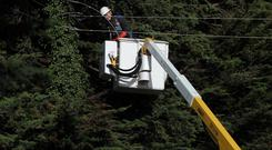 ESB crew attend electricity cables on the N11 in Co Wicklow yesterday Picture: Stephen Collins/Collins Photos