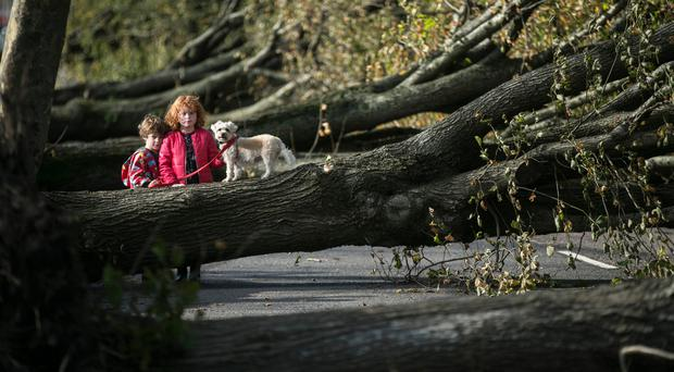 Storm Brian aftermath: Country in for a 'changeable and unsettled week ahead'