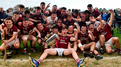 St Martin's players celebrate with the Bob Bowe Cup after winning the Wexford SHC final. Photo: Sportsfile