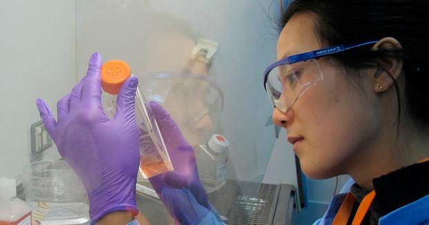 A worker at Beigene labs. Shares in the Chinese biotech have soared on international markets