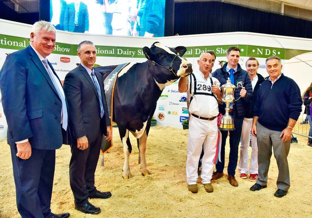 (left to right): John Kirby, National Dairy Show director; Brian Carscadden, show judge, with John Dowling, Baldonnell, Co Dublin and the Supreme Overall Champion - Clonpaddin G Fame ET - pictured with Tadgh Bourke, Laura Fitzgerald and Mervyn Eager.