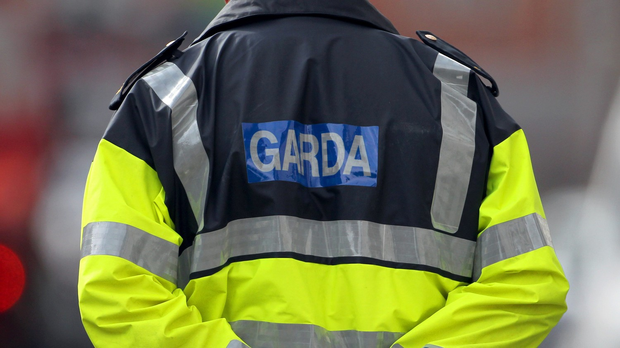 Gardai discovered two firearms and a quantity of ammunition in the discarded rucksack