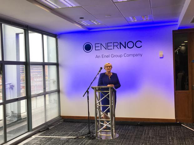 An Tánaiste and Minister for Business Enterprise and Innovation, Frances Fitzgerald TD