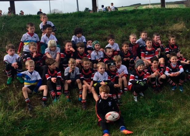 Wicklow RFC's minis teams