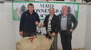 Mayo/Connemara Sheep Show of Blackface Rams: 1st place Hogget Ram Michael O' Neill,Tuar Mhic Eadaigh collecting his prize from Stephen Grealis and Seamus Joyce. Photo: Conor McKeown