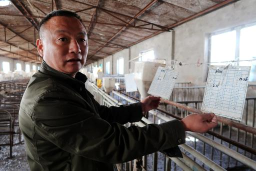 Zhang Faqing shows discarded record cards in his pig farm on the outskirts of Beijing, China October 30, 2017. Picture taken October, 30, 2017. REUTERS/Hallie Gu