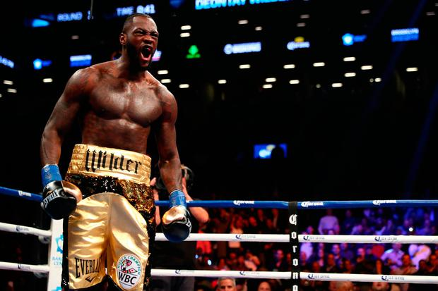 Deontay Wilder celebrates after knocking down Bermane Stiverne in the first round during their rematch for Wilder's WBC heavyweight title at the Barclays Center on November 4, 2017 in the Brooklyn Borough of New York City. (Photo by Al Bello/Getty Images)