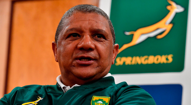South Africa head coach Allister Coetzee in thoughtful mood during a press conference yesterday. Photo by Brendan Moran/Sportsfile