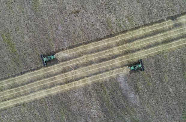 FILE PHOTO: An aerial view shows combines harvesting wheat in a field of the Iskra farm outside the Siberian village of Kulun, the Uzhursky district of Krasnoyarsk region, Russia September 28, 2017. REUTERS/Ilya Naymushin/File Photo
