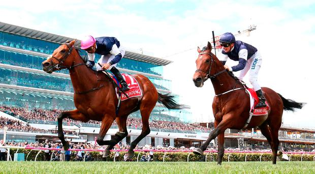 Rekindling, with Corey Brown up, gets the better of Johannes Vermeer (Ben Melham) to win the Melbourne Cup at Flemington Racecourse. Photo: Robert Cianflone/Getty Images