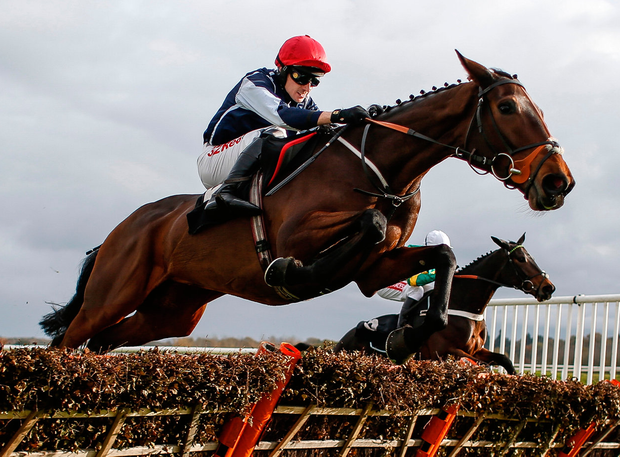 Paddy Brennan riding Cap Soleil (nearest) clear the last to win The CSP Maresâ Novicesâ Hurdle Race at Newbury. Photo: Alan Crowhurst/Getty