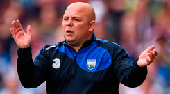 Waterford manager Derek McGrath. Photo: Seb Daly/Sportsfile