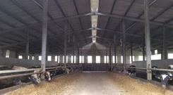 This shed is the centrepiece of a fine farmyard on a 57ac farm at Drumgahan, Glaslough, Co Monaghan