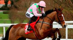 Faugheen and Ruby Walsh last year Photo: Niall Carson/PA Wire