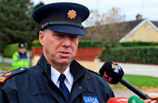 Garda Superintendent Andrew Watters said 200 cannabis plants were found in the shed. Photo: Collins