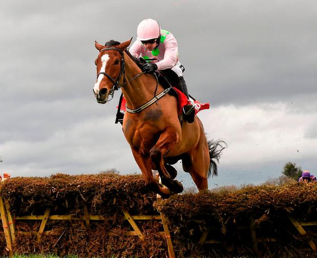 All eyes will be on Faugheen and hopefully he can prove he is still a superstar… and be sound come Monday morning! Photo: Brendan Moran / Sportsfile