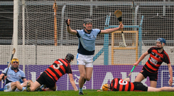 Conor Boylan of Na Piarsaigh celebrates his side's second goal as Ballygunner players look forlorn. Photo: Sportsfile