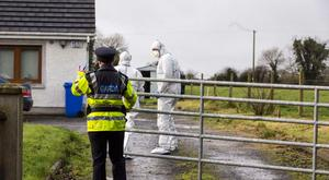 Scene of a suspected stabbing in Co Offaly (Photo: Mark Condren)