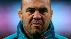 Australia head coach Michael Cheika. Photo: Reuters