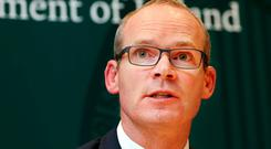 Disappointment: Foreign Affairs Minister Simon Coveney. Photo: Steve Humphreys