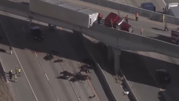 Approximately 25 cows fell from the overpass, Fox 13 reported, but it is unclear how many were killed. Screenshot from KSL News.