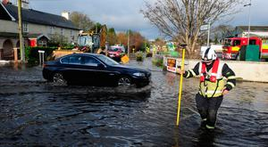 Fooding in Portarlington, Co Laois. Photo: James Flynn/APX