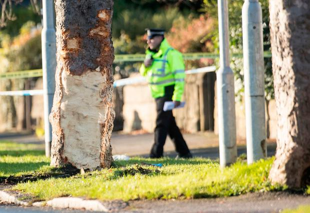 Police at the scene where a stolen car crashed into a tree (left) in Stonegate Road, Leeds. West Yorkshire Police said five people were killed, including three children Credit: Danny Lawson/PA Wire