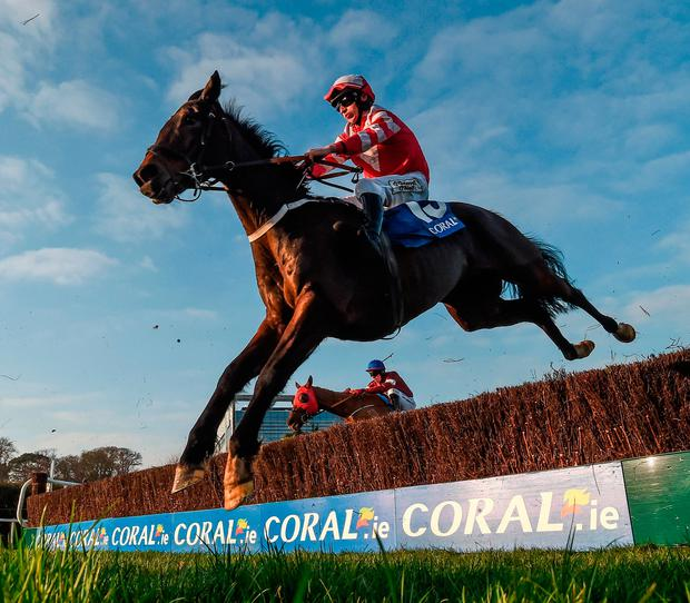 Total Recall, with Roger Loughran up, clearing the last during the Leopardstown Handicap Chase in January. Photo by Cody Glenn/Sportsfile
