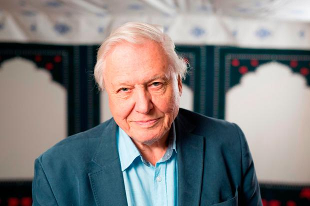 All not yet lost: Naturalist David Attenborough