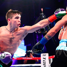 Michael Conlan lands a left on the way to beating Luis Fernando Molina during their featherweight bout at The Theater at Madison Square Garden in New York. Photo: Mikey Williams/Top Rank/Sportsfile