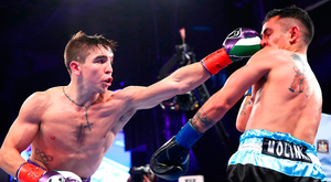 Michael Conlan lands a left jab on Luis Fernando Molina during their featherweight bout at Madison Square Garden, New York on Saturday night. Pic: Sportsfile