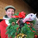 Farming Independent columnist Darragh McCullough has branched into selling turkeys this Christmas. Photo: Seamus Farrelly.