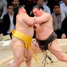 Sumo wrestlers show respect in winning, says Arsene Wenger