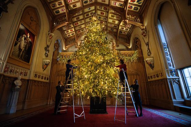 WINDSOR, ENGLAND - NOVEMBER 23: Employees pose with a 20ft Nordmann Fir tree from Windsor Great Park in St George's Hall which has been decorated for the Christmas period on November 23, 2017 in Windsor Castle, England. The Windsor Castle State Apartments are used by members of the Royal Family for hosting and events. Queen Elizabeth II resides at Windsor Castle most weekends and over the easter period and it is the oldest and largest inhabited castle in the world. (Photo by Jack Taylor/Getty Images)